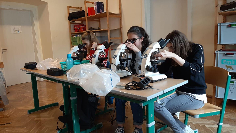 WPF Biologie